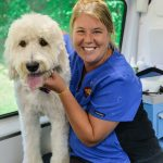 Female Groomer With Dog