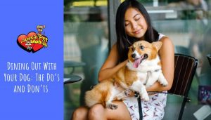 Dining Out With Your Dog The Do's and Don'ts
